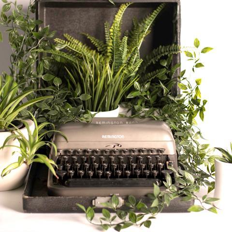 desarrollo sostenible-creación-contenidos-salud-veganos-sostenibles-katherine-rodriguez